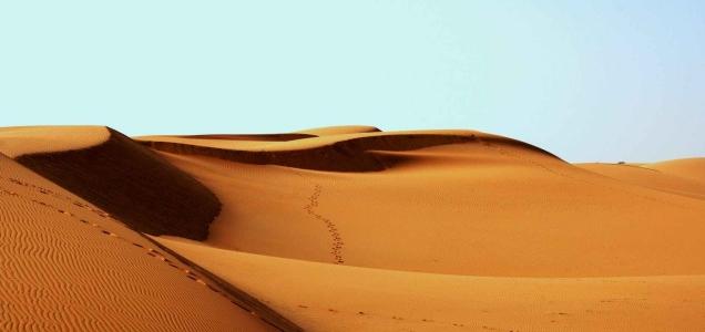 desert-africa-bedouin-footprints.jpg